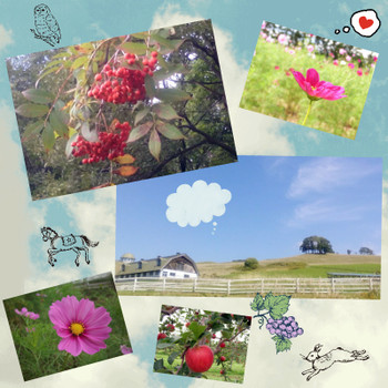 Camerancollage2014_09_21_144932